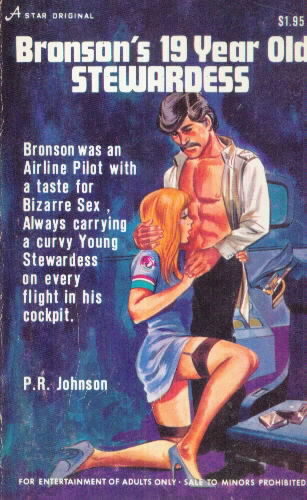 BRONSON'S 19 YEAR OLD STEWARDESS by P.J. Johnson
