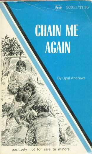 CHAIN ME AGAIN by Opal Andrews
