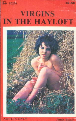 VIRGINS IN THE HAYLOFT by James Blayer