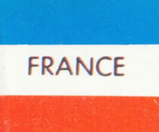 French Flag Logo